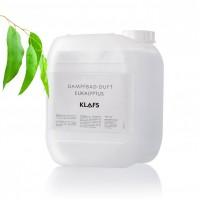 Garinės pirties kvapas EUKALIPTAS (5l)